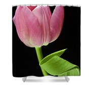 Seriously Pink 2 Shower Curtain