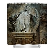 Sermon In Stone Shower Curtain