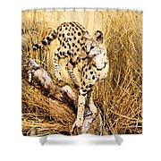 Serval Shower Curtain