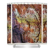 Set In Stone Triptych Shower Curtain