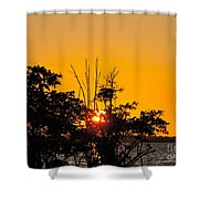 Setting Mangrove Sun Shower Curtain