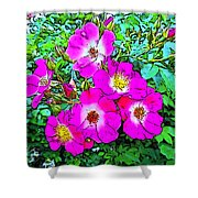 Seven Sisters Rose Variant Shower Curtain
