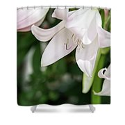 Sexual Flower Shower Curtain
