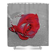 Sfscl00707 Shower Curtain