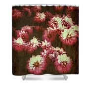 Shabby Chic Floral Design Shower Curtain