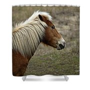 Shackleford Banks Shower Curtain