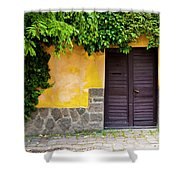Shaded Entrance Shower Curtain