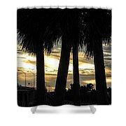 Shaded Palms Shower Curtain