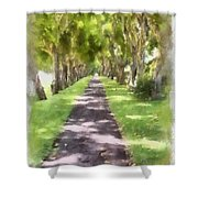 Shaded Walkway To Princeville Market Shower Curtain