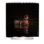 Shaded Wood Duck Shower Curtain