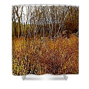 Shades Of Amber Shower Curtain