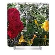 Shades Of Color  Shower Curtain