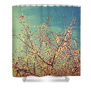 Shades Of Fall Shower Curtain