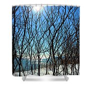 Shadow Branches Shower Curtain