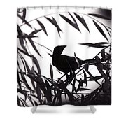 Shadow Of The Crow Shower Curtain