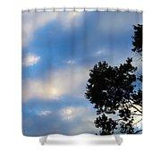 Shadow On Softness Shower Curtain