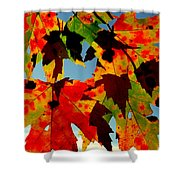 Shadow Play Shower Curtain