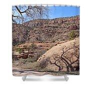 Shadow Tree Dominguez-escalante Canyon Colorado Shower Curtain