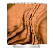 Shadowing Time Shower Curtain