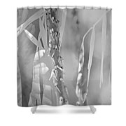 Shadowland Shower Curtain