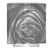 Shadowless Rose - 26789 Shower Curtain