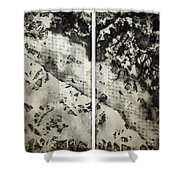 Shadows And Lace Shower Curtain