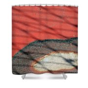 Shadows And Rust Shower Curtain