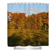 Shadows Bow Shower Curtain