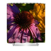 Shadows Of August Shower Curtain