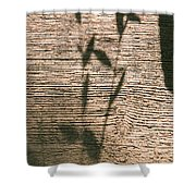 Shadows Of Life Shower Curtain