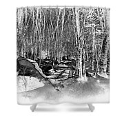 Shadows Of Winter Shower Curtain