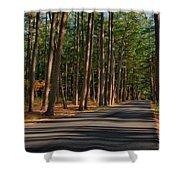 Shadows Road - Ocean County Park Shower Curtain