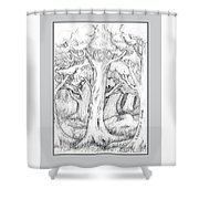 Shady Forest Of Trees Shower Curtain