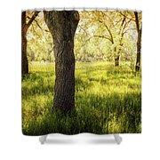 Shady Grove Shower Curtain