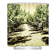 Shady Grove Palm Springs Shower Curtain