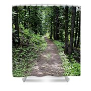 Shady Grove Path Shower Curtain