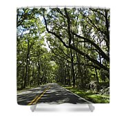 Shady Road Shower Curtain
