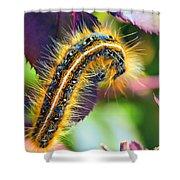Shagerpillar Shower Curtain by Bill Tiepelman