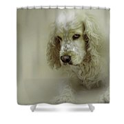Saint Shaggy Art 7 Shower Curtain