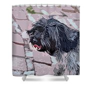 Shaggy Pup Abstract Shower Curtain