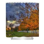 Shaker Fall Geese Shower Curtain