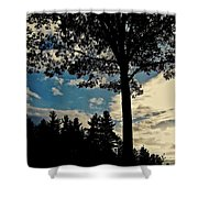 Shelter Me Shower Curtain