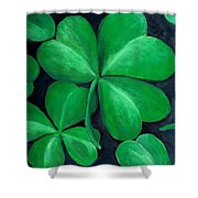 Shamrocks Shower Curtain by Nancy Mueller
