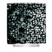 Shape And Color 9 Shower Curtain