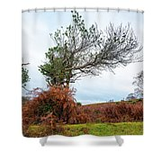 Shapes Of A Nature Shower Curtain