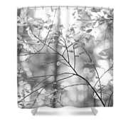Shapes Of Nature Shower Curtain