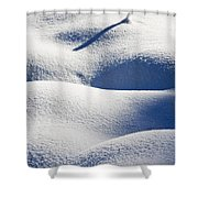 Shapes Of Winter Shower Curtain