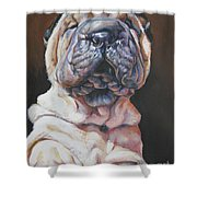 Shar Pei Pup Shower Curtain