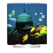 Shark And Fishes Shower Curtain