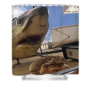 Shark On The Wall Shower Curtain